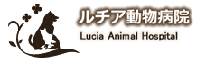 ルチア動物病院|〒594-1116 和泉市納花町256-1
